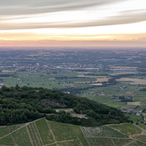Découvrir le vignoble Beaujolais