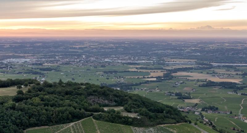 Visit Beaujolais Vineyard