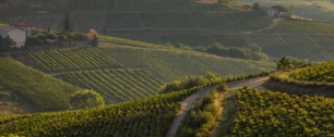 Pur terroir by Beaujolais