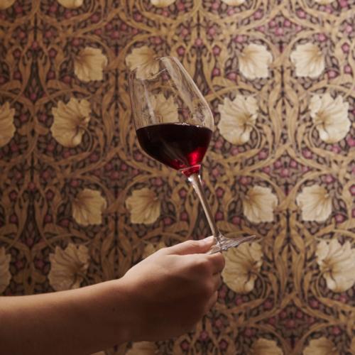 Quel vin du Beaujolais choisir ?