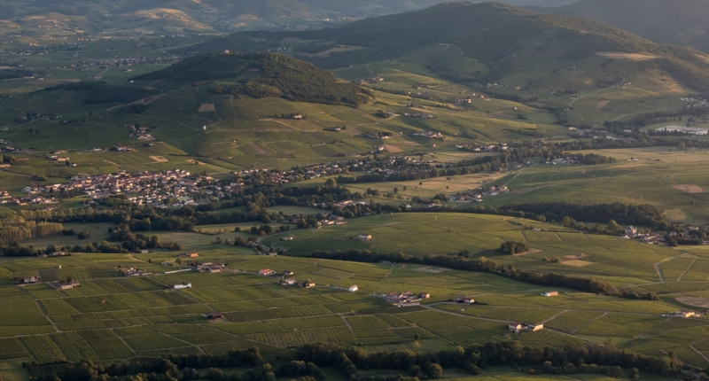 Discovering the Beaujolais terroirs